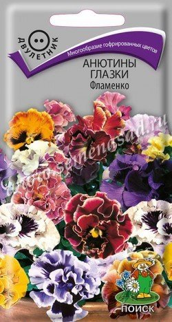 Анютины глазки Фламенко 00692