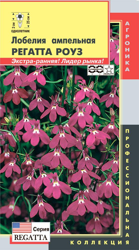 Лобелия ампельная Регатта роуз 01994