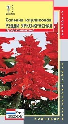 Сальвия карликовая ярко-красная ( серия Reddy)