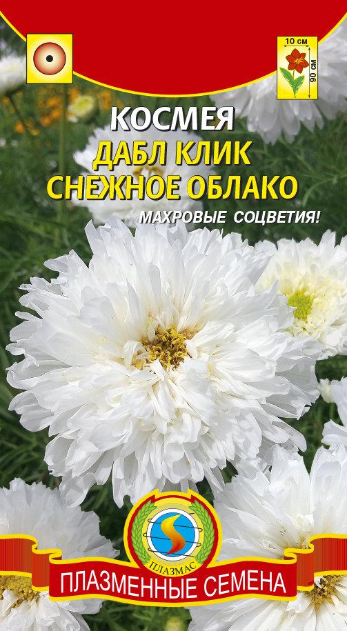 Космея Дабл клик Снежное облако 02829