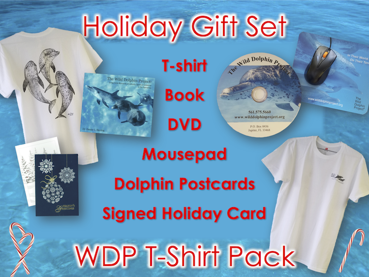 Holiday Gift Set - Triple Dolphin Tee