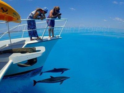 Bahamas Trip Participant