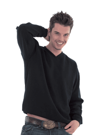 Embroidered Unisex V-Neck Sweatshirt ACSSVNE1