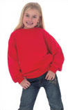 Embroidered Childrens Sweat Shirt