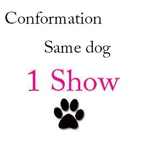 Conformation Same Dog 1 Show - $28 + $1 service fee