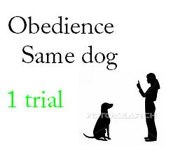 Rally Obedience Same Dog 1 Trial - $29