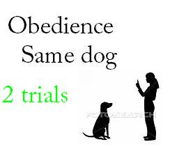 Rally Obedience Same Dog 2 Trials - $57