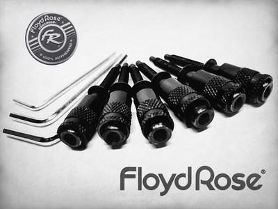 Intonation Floyd Rose Hollow Points Black