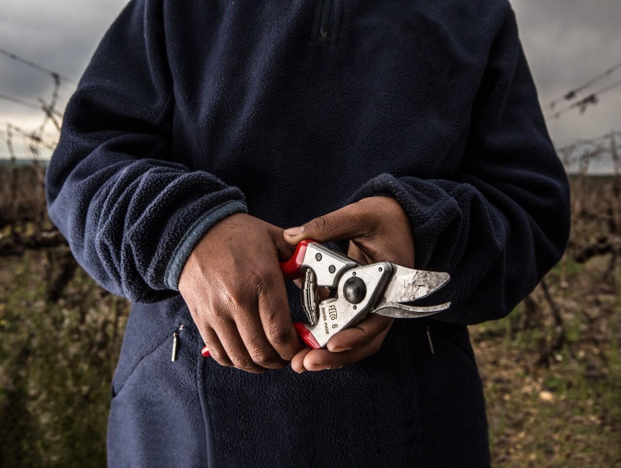 FELCO 16 Left-Handed Pruning Shear (Ergonomic)