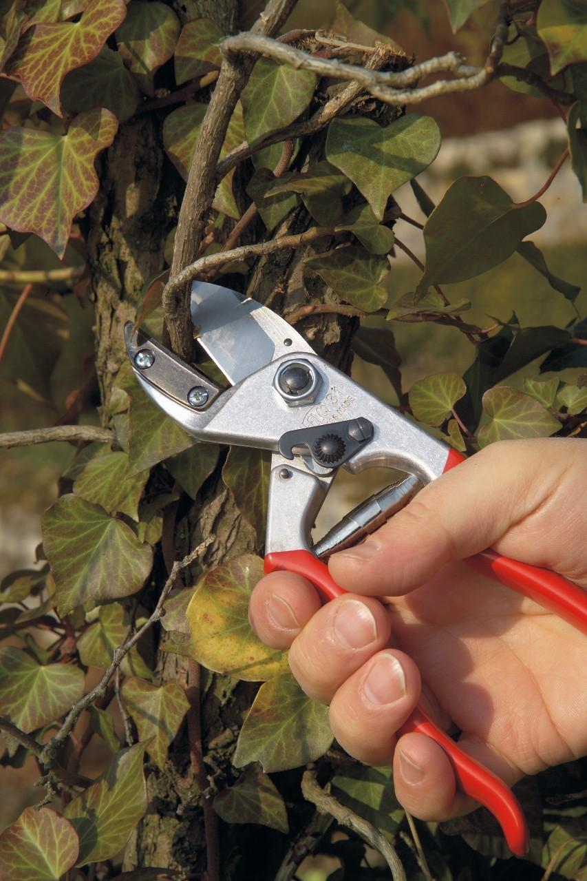 FELCO 31 Pruning Shear