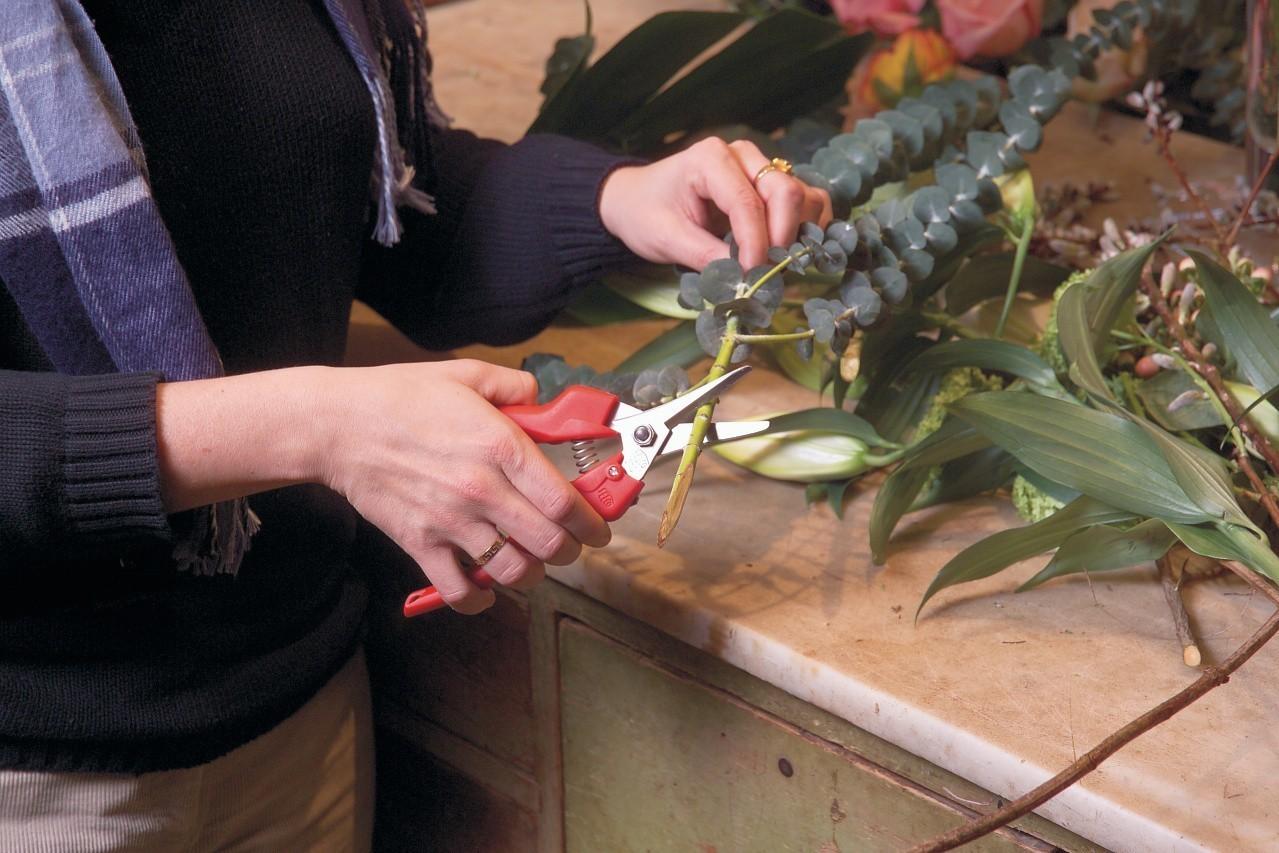 FELCO 310 Fruit Harvesting Pruner