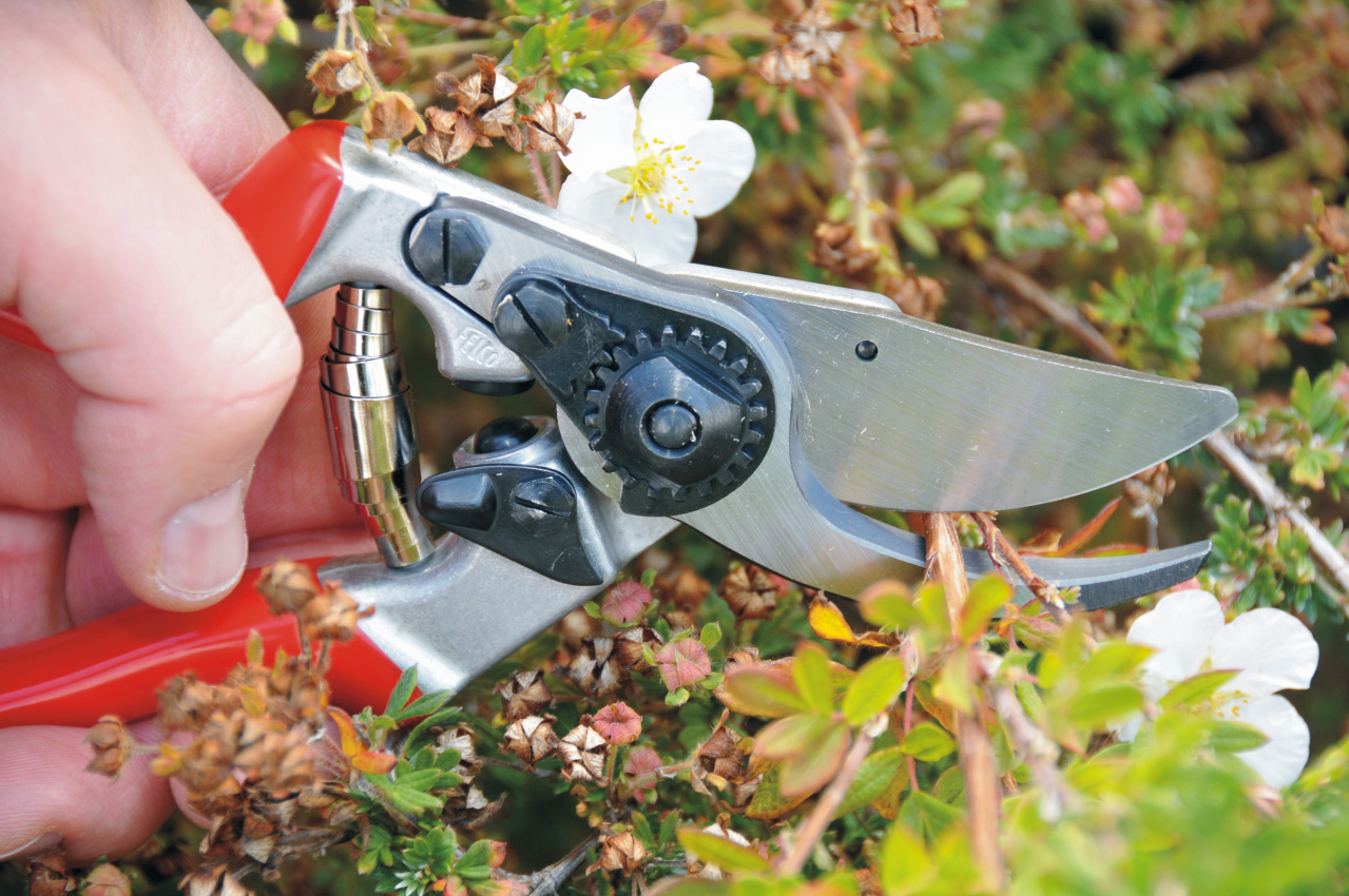 FELCO 9 Pruning Shear (Ergonomic)