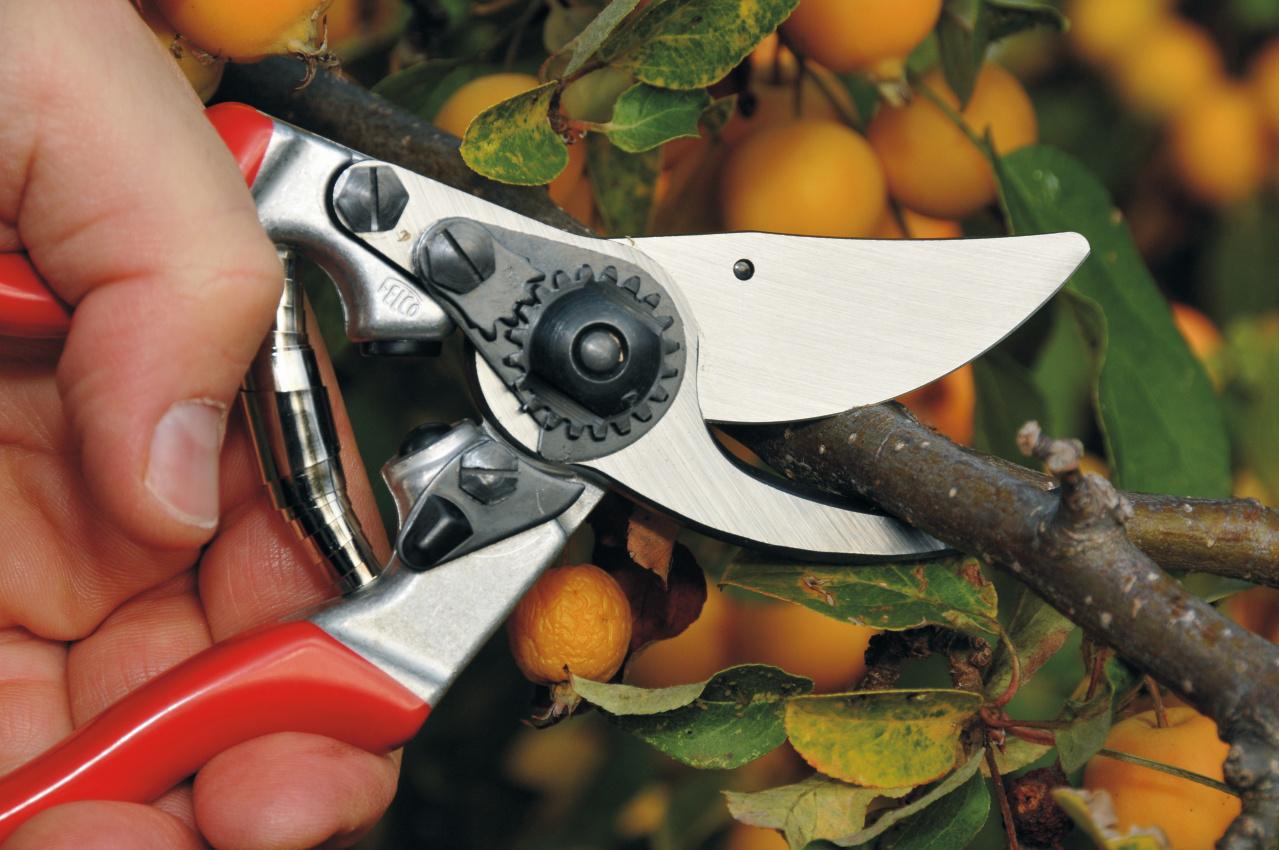 FELCO 9 Pruning Shear (Ergonomic)