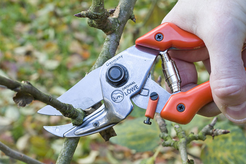 LÖWE 8.107 Anvil ergonomic pruner with curved blade