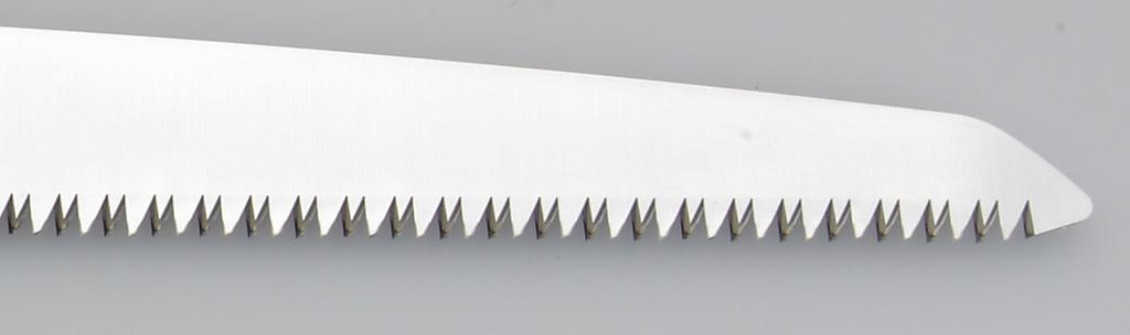 BIGBOY 360 (LG Teeth)