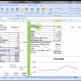 Monte Carlo Simulation - Online Course