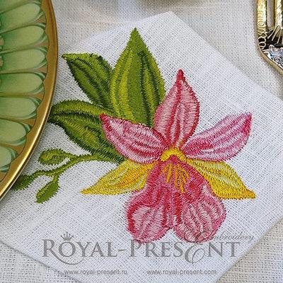 Дизайн машинной вышивки Розовая орхидея