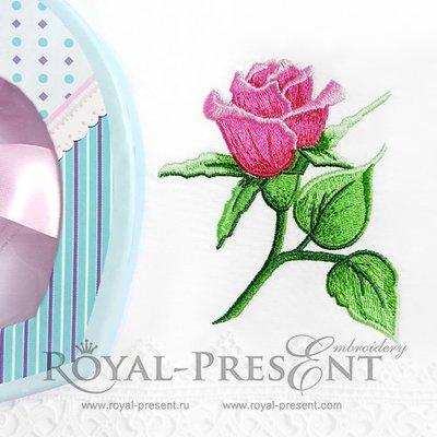 Дизайн машинной вышивки Роза садовая