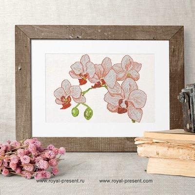 Дизайн для машинной вышивки крестом Орхидеи