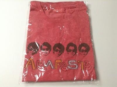 Arashi Arafes 2013 Tshirt