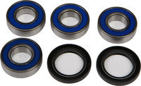 ALL BALLS REAR INDEPENDENT SUSPENSION BEARINGS