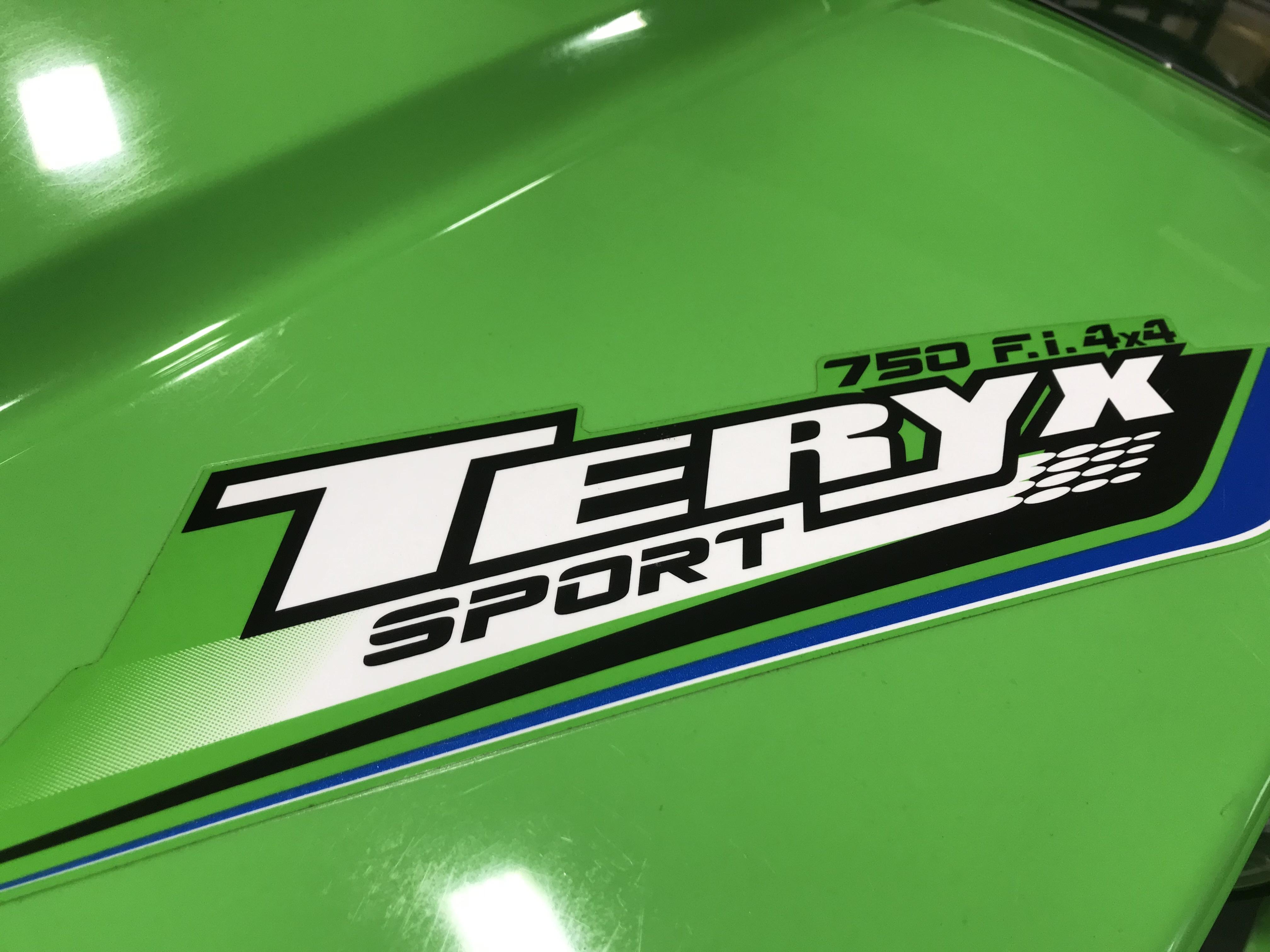 2012 Kawasaki Teryx 750 FI LE Sport