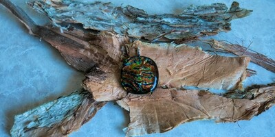 Gorgeous copper/blue/green dichroic fused glass pendant