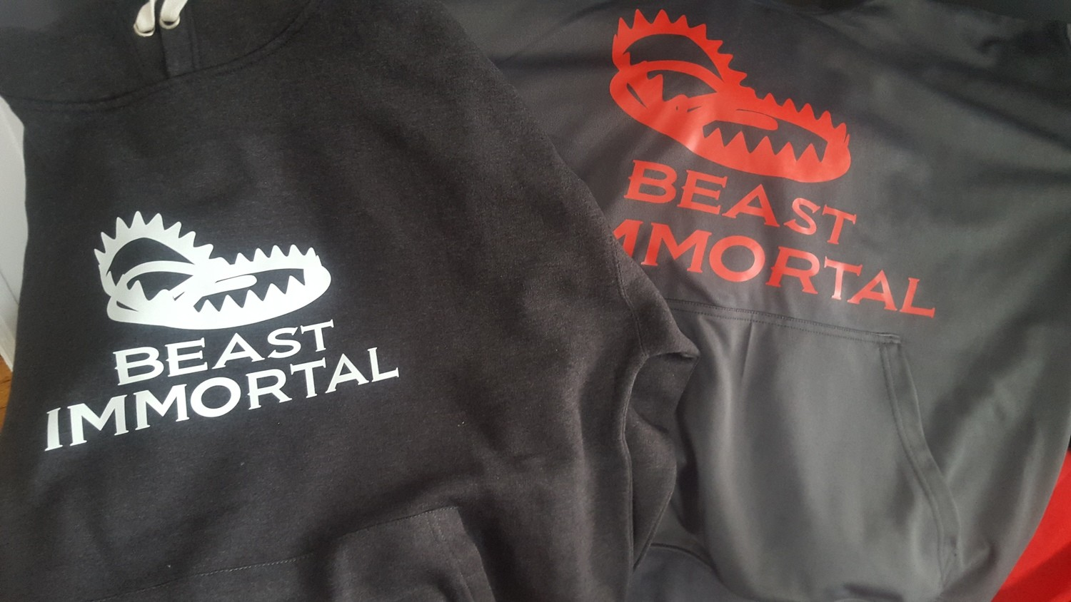 Beast Immortal gray performance hoodie