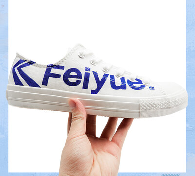 The Shoe Sneaker Logo Feiyue - NEW