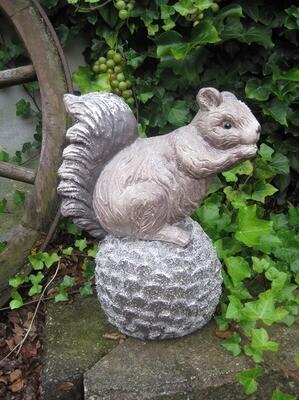 Stort egern på kogle