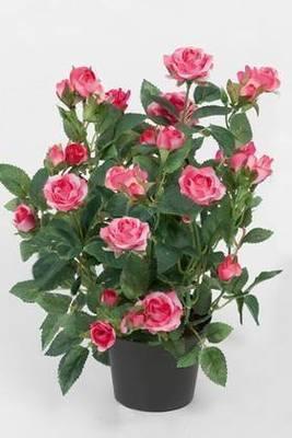 Rose i potte / Kunstige blomster