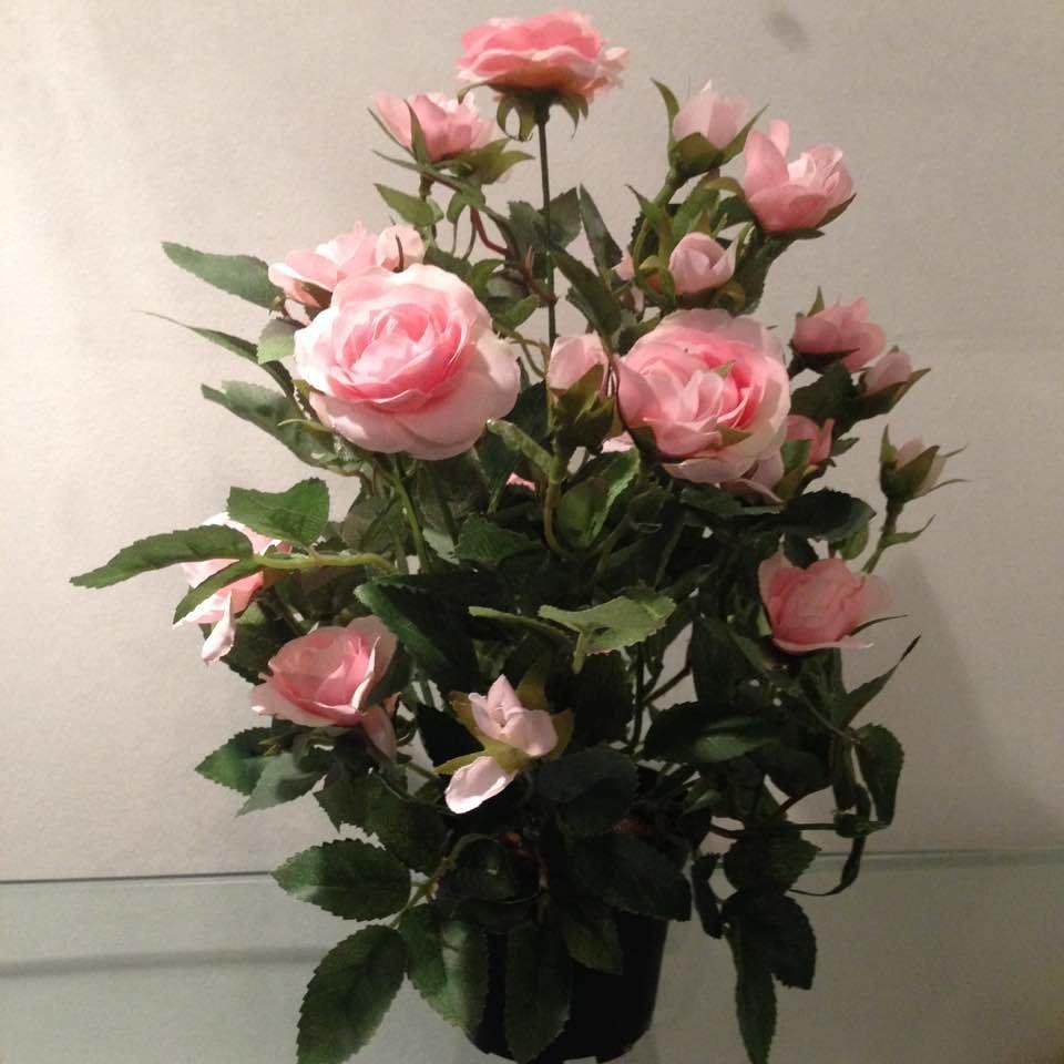 A. Rose i potte / Kunstige blomster