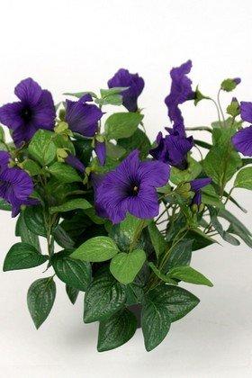 A. Petunia i potte / Kunstige blomster