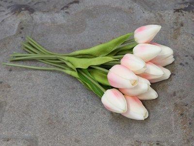 Tulipaner i bundt af 12 stk rosa