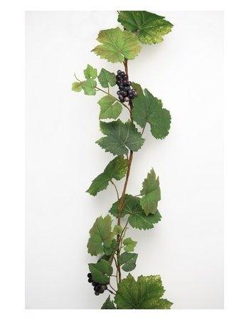 Vinranke