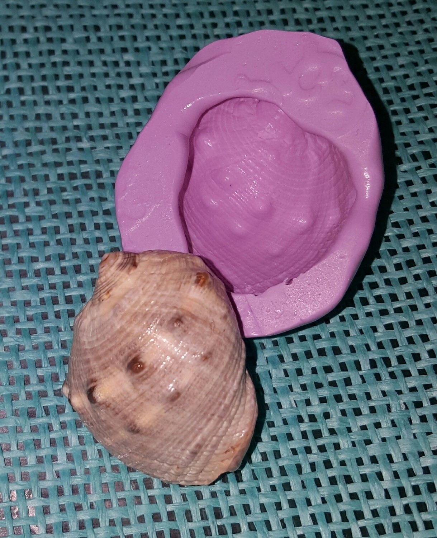 Knobby Shell