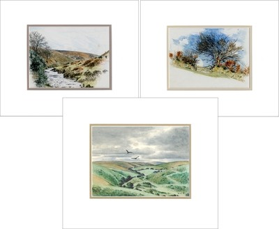 Hope Bourne's Limited Edition Prints, Mounted