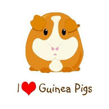 Little Farmers - Guinea Pigs- Monday 30th  March 10am - 11:30am