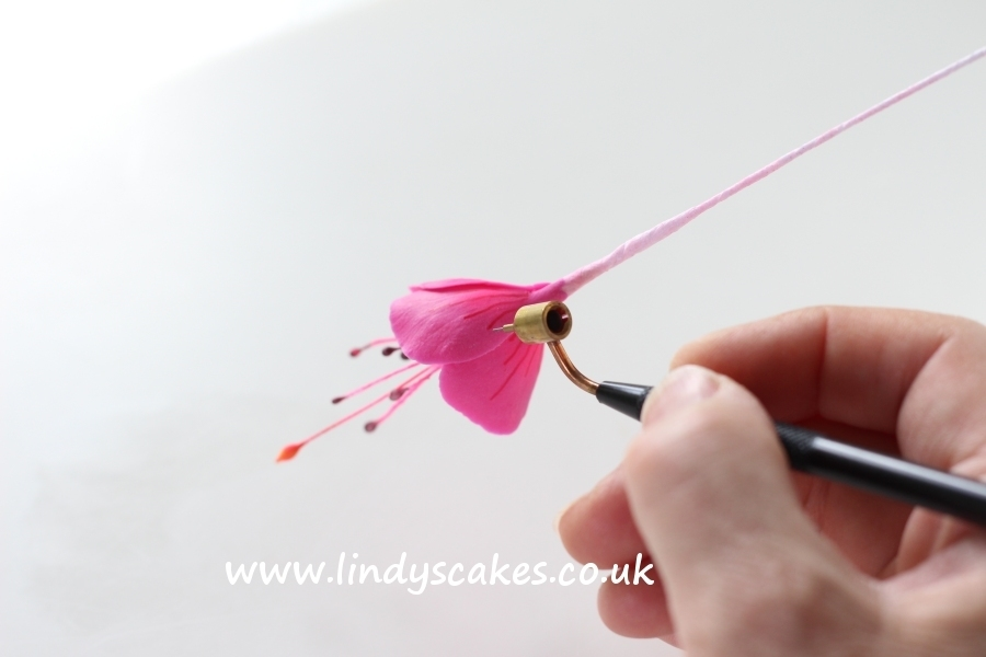 Fuchsia petal markings being added with a fluid writer