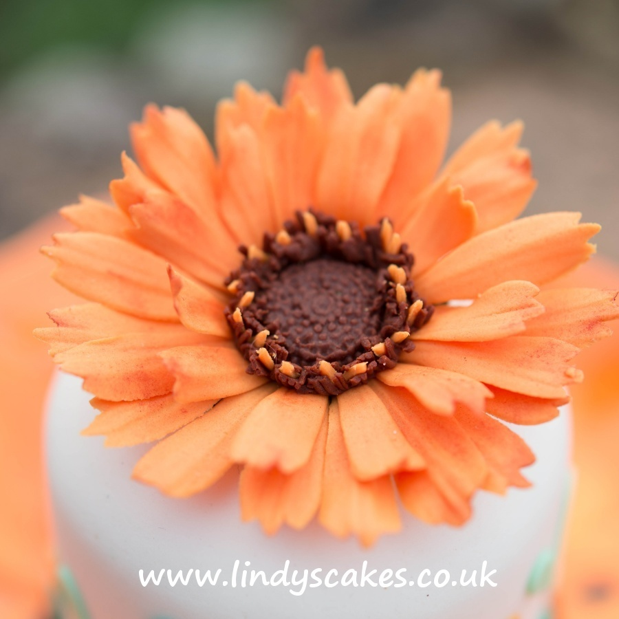 calendula or marigold flower created by Lindy using the Lindy's Cakes calendula cutters