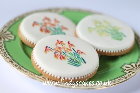 Snowdrop cookies - who said snowdrops have to be white?