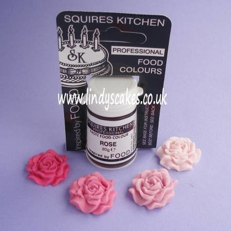 Pink - Rose Professional Paste Food Colour 20g (SK)