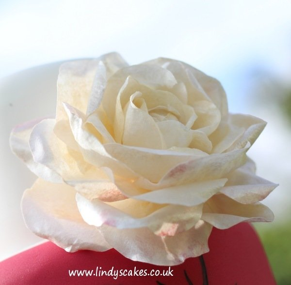 How to make sugar roses class with Lindy Smith Ludlow, SHROPSHIRE