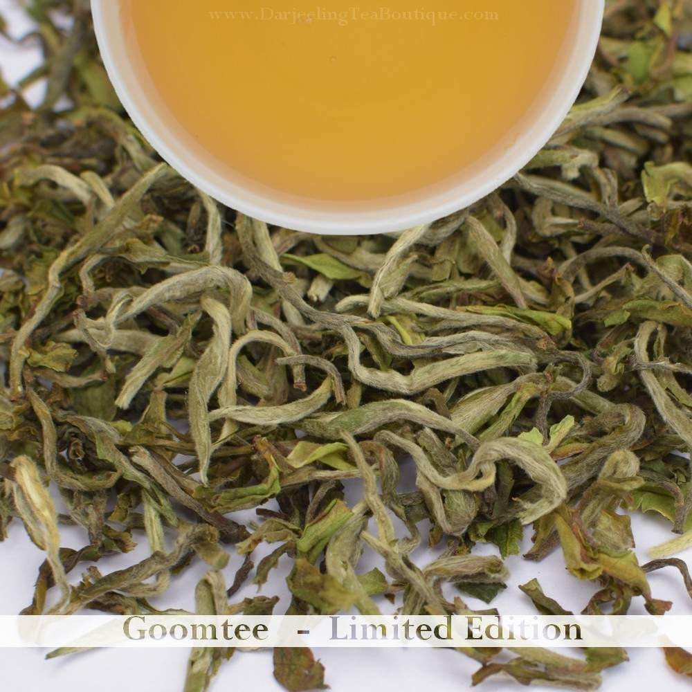 Sample: A FRAGRANT GOOMTEE CLONAL EXOTICA - Darjeeling 1st flush 2019  - 10gm (0.35oz)