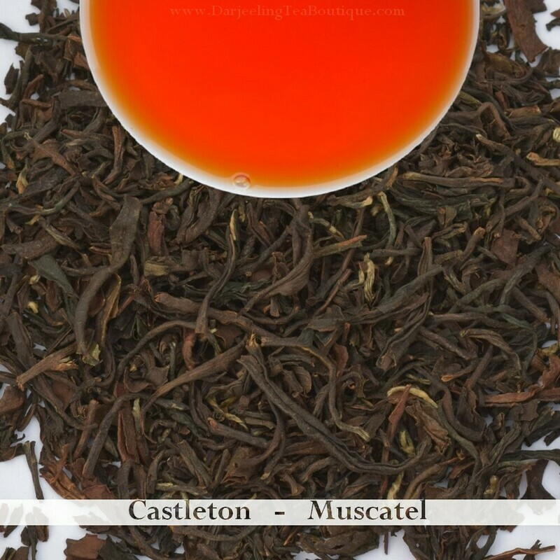 A DELICIOUS CASTLETON MUSCATEL - Darjeeling 2nd Flush 2019 (100gm / 3.5oz)