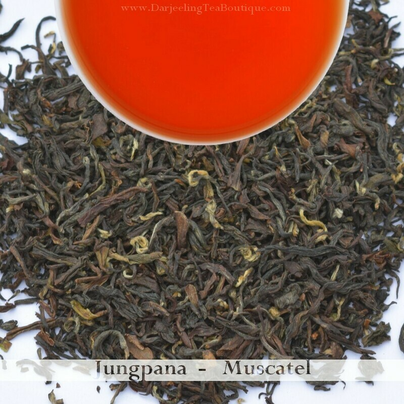 AN EXQUISITE AND VIBRANT JUNGPANA MUSCATEL - 2019 Darjeeling 2nd Flush  (100gm / 3.5oz)