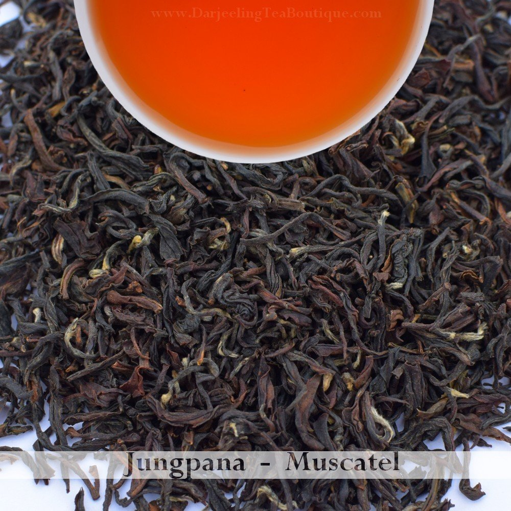 A MUSCATEL FROM JUNGPANA  - 2018 Darjeeling 2nd Flush  (100gm / 3.5oz)