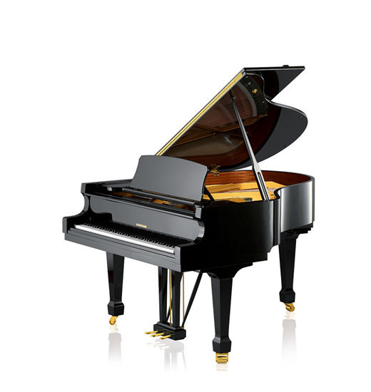 W. Hoffmannn, Modell T-161, made by C. Bechstein Europe inkl. Selbstspielsystem