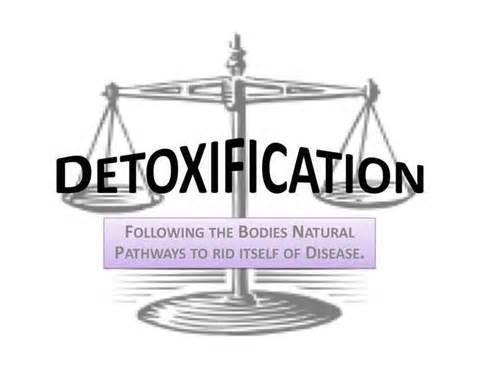 6 Day Detox Kit