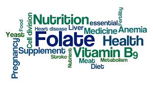 5-MTHF Bioactive Folate